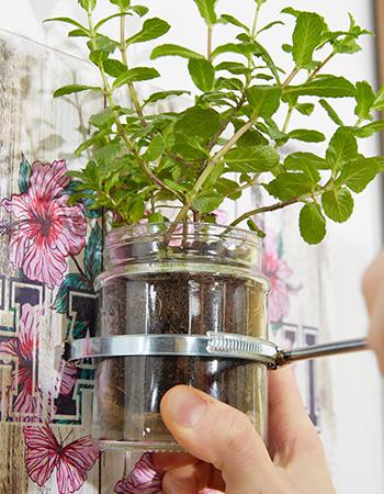 Gläser in die Schlauchbandage am Holzbrett einsetzen