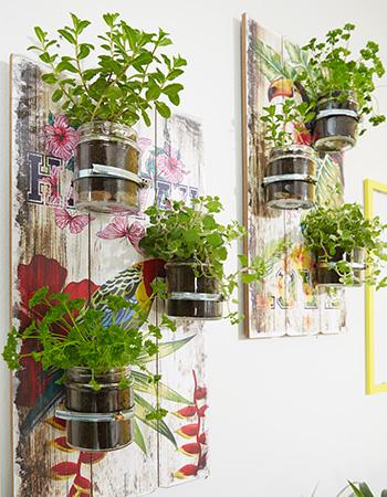 ...und den Kräutergarten an der Wand montieren