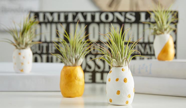Mini-Ananas selber machen