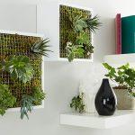 Vertikaler Garten für Innen selber machen