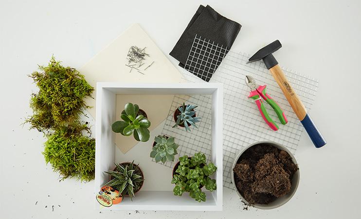 Vertikaler Garten für die Wand