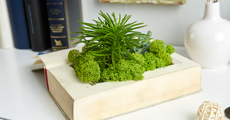 Book planter DIY