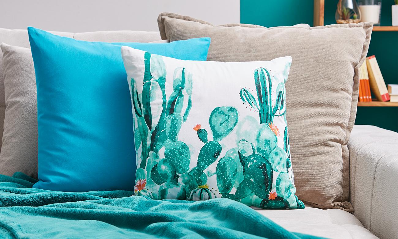 Kaktus Co Auf Dem Vormarsch Mömax Blog