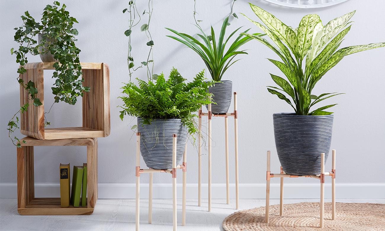 diy pflanzenst nder aus kupfer und holz m max blog. Black Bedroom Furniture Sets. Home Design Ideas