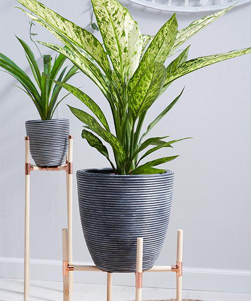Pflanzenständer aus Holz und Kupfer