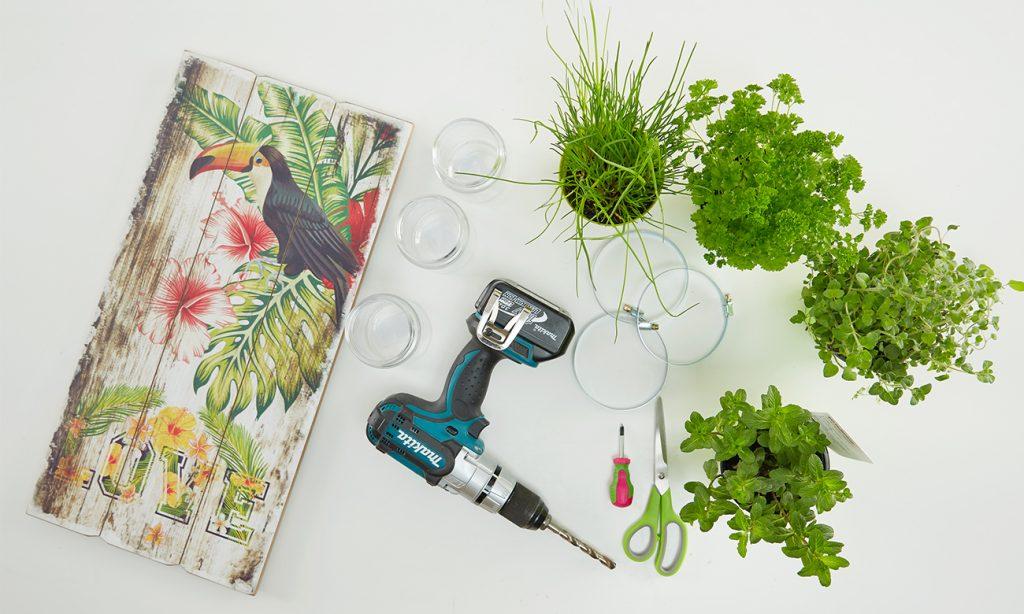 Vertikaler Kräutergarten für die Küche - was man benötigt