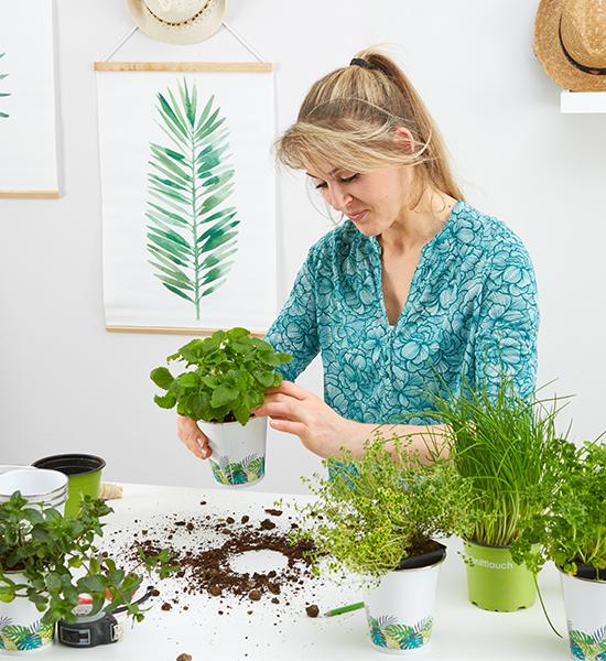 Kräuter in die passenden Pflanzentöpfe setzen