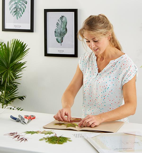 Die Pflanzen zum Trockenen zwischen Backpapier legen