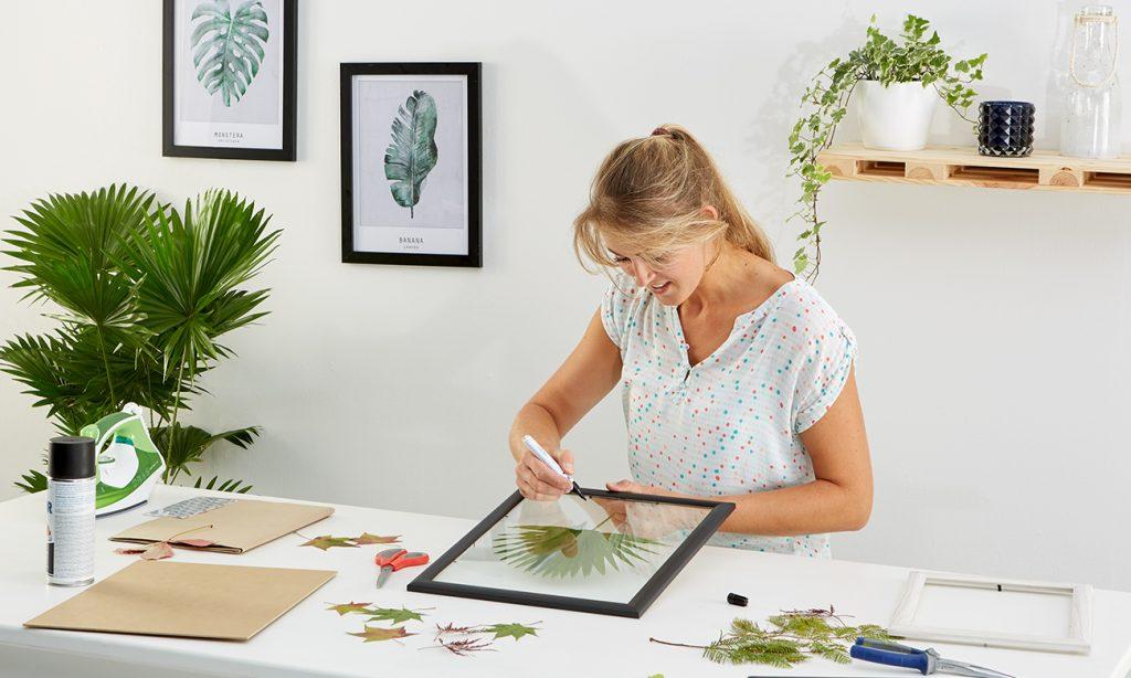 Herbarium im fliegenden Bilderrahmen