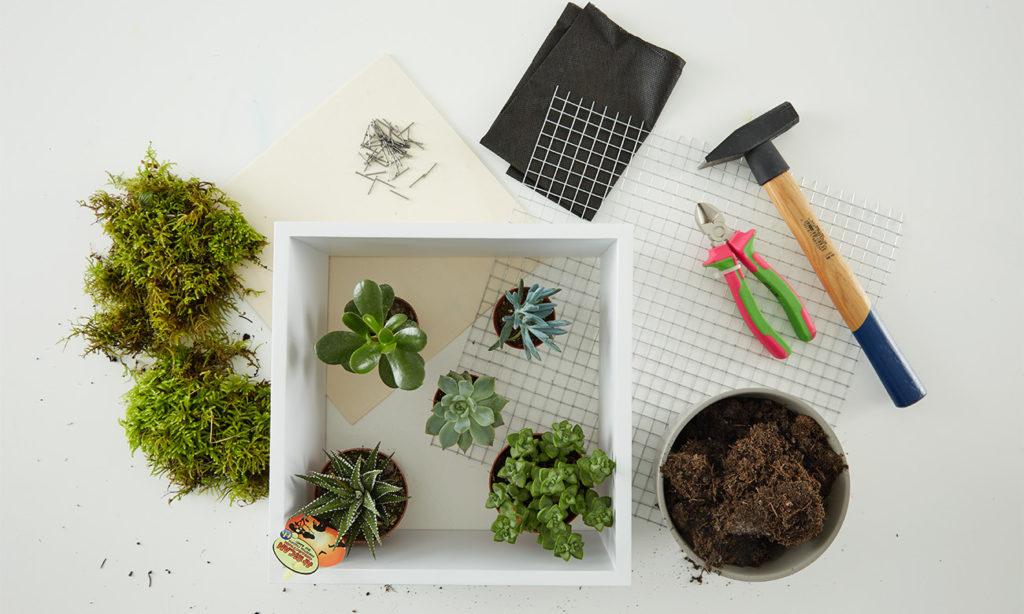 Verticaler Garten - Was man alles benötigt