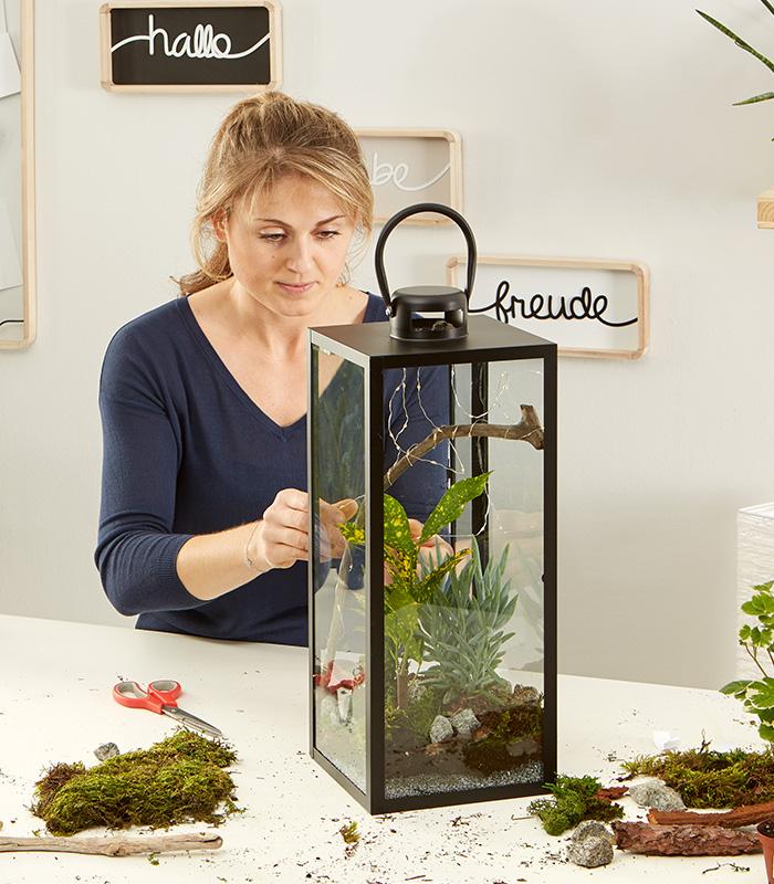 Laterne Dekorieren Lichterkette : laterne dekorieren mit pflanzen und lichterkette m max blog yvonne bastelt eine ~ Watch28wear.com Haus und Dekorationen