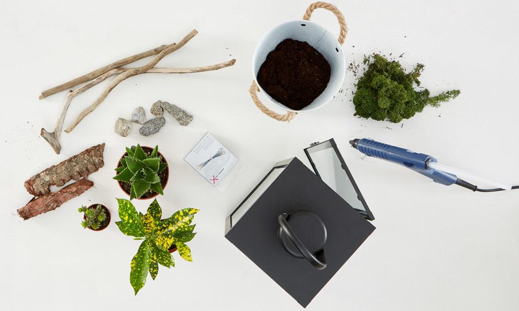 Laterne dekorieren mit Pflanzen und Lichterkette - Was man alles benötigt