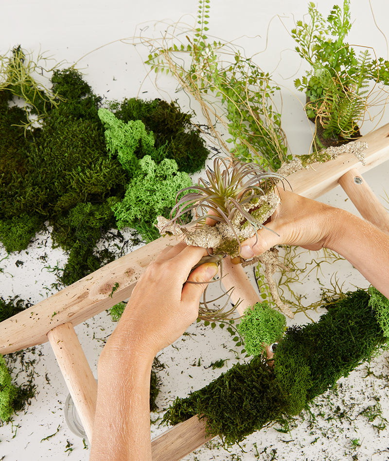 Zwischen dem Moos werden auch anderen Kunstpflanzen befestigt