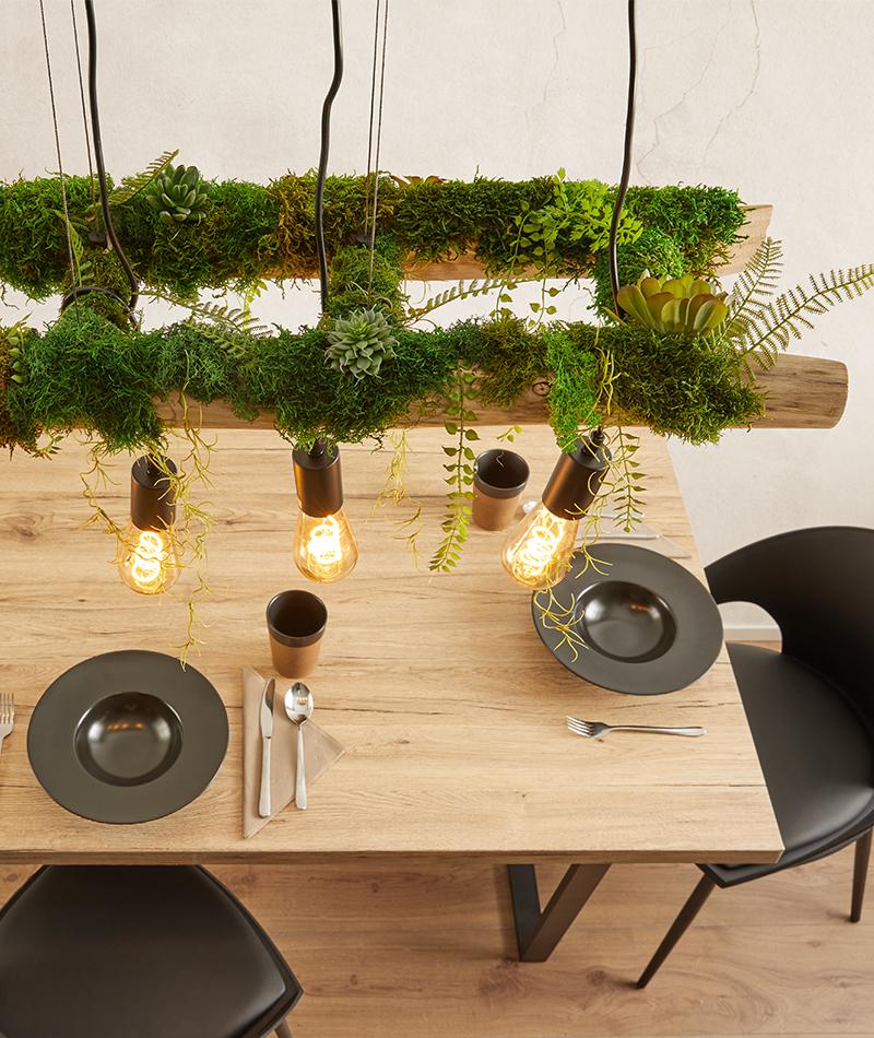 Hängeleuchte mit Moos und Pflanzen selber basteln