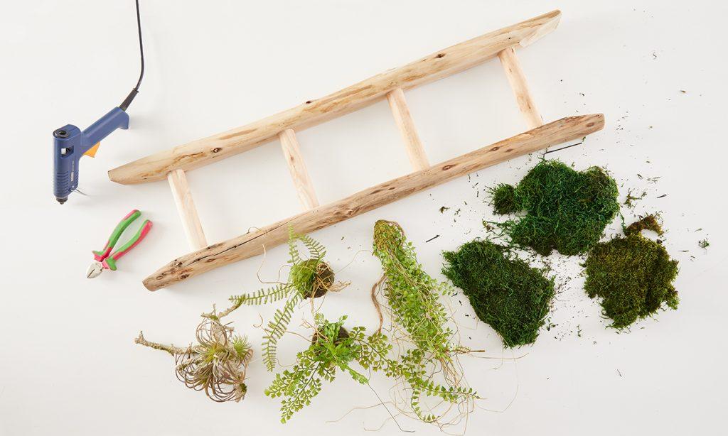 Hängeleuchte mit Moos und Pflanzen selber basteln - was man alles benötigt